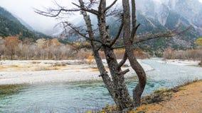 Fall season of kamikochi national park, Japan Royalty Free Stock Images