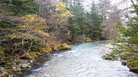 Fall season of kamikochi national park, Japan Royalty Free Stock Image