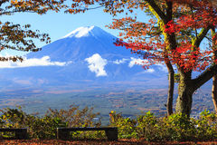 Fall season of Mt. Fuji in Japan with nice yellow color Royalty Free Stock Photo
