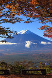 Fall season of Mt. Fuji in Japan with nice yellow color Stock Photography