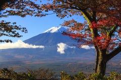 Fall season of Mt. Fuji in Japan with nice yellow color Stock Image
