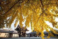 The fall season of Nishi Honganji temple in Kyoto Royalty Free Stock Photography