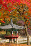 Fall season in the Secret Garden, Seoul Stock Images