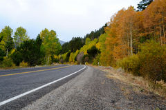 Fall Season In The Sierras Royalty Free Stock Image