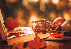 Fall season still-life Royalty Free Stock Image