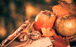 Fall season still-life Stock Photos