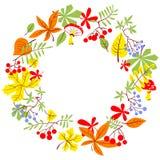 Fall season wreath. Autumn border with bright leaves. Vector sea. Fall season wreath. Autumn border with bright leaves, rowan and grape. Vector seasonal round Stock Photo