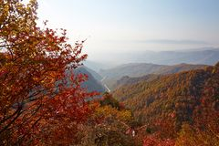 Mount Bailongshan autumn, Shanxi, China royalty free stock image