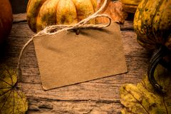 Fall shopping sale promotion in Autumn season. Harvest cornucopia background royalty free stock images