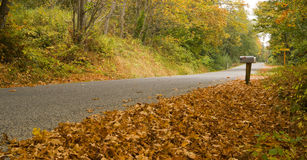 Mailbox Leaves Fall on the Side Road Stock Image