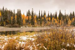 Fall at Silver Lake. Early snowfall at Silver Lake next to the Brighton Ski Resort up Big Cottonwood Canyon, just outside Salt Lake City, Utah Stock Image