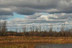 Fall skies Stock Photo