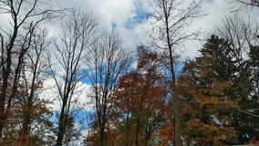 Fall sky royalty free stock photos