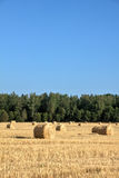 Fall. Slanted field. Stock Images