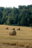 Fall. Slanted field. Stock Photography