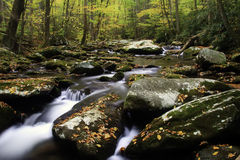 Fall in Smoky Mountain Nationl Park. A beautiful flowing mountain stream Royalty Free Stock Photography