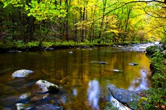 Fall in the smoky mountains. A slow moving stream in the Smoky Mountains in fall Royalty Free Stock Photos