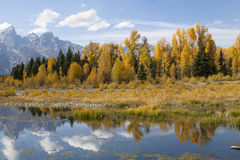Fall on the Snake River Stock Images