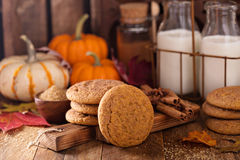 Fall snickerdoodle cookies with pumpkin Royalty Free Stock Photography