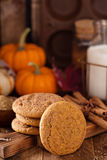 Fall snickerdoodle cookies with pumpkin Stock Images