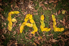 FALL spelled out with leaves Stock Photos