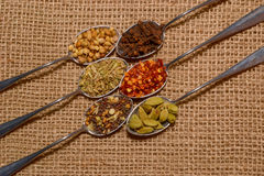 Fall spices Royalty Free Stock Images