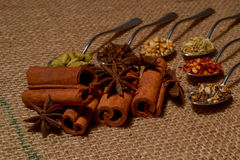 Fall spices Stock Photography