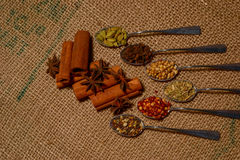Fall spices Royalty Free Stock Photography