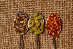 Fall spices Royalty Free Stock Photos