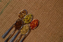 Fall spices Royalty Free Stock Photo
