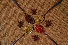 Fall spices Stock Photo