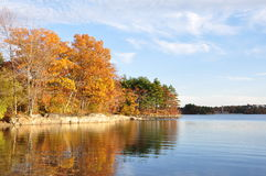 Fall at Spot Pond Stock Image