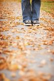 Fall stand. Man stand with shoes together in the fall leaves Royalty Free Stock Photo