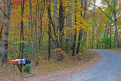 A set of mailboxes along a rural road in fall. royalty free stock images