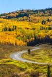 Fall in Steamboat Springs Colorado Stockbild
