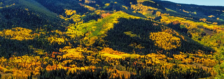 Fall in Steamboat Springs Colorado Stockbilder