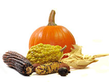 Fall Still Life. Of pumpkin, maize, gourds, and nuts isolated on white Stock Photo