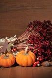 Fall Still Life Stock Photo