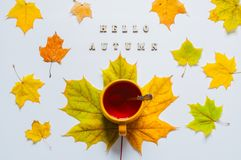 Fall Still Life. Cup Of Tea With Maple Fall Leaves And Inscription Hello Autumn On The White Background Royalty Free Stock Photo