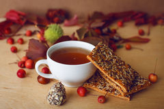 Fall still life. cup of tea Stock Photos