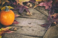 Fall Still Life with Mini Pumpkin and Maple Leaves on Rustic Wood boards as a Thankgiving or Halloween design element, copy space