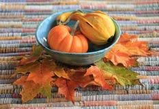 Fall Still Life. Pumpkin. Gourd. Squash.  Royalty Free Stock Photo
