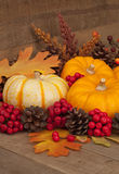 Fall Still Life with Pumpkins, Berries, and Gourd Stock Photo