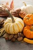 Fall still life with pumpkins and corn. Fall still life with pumpkins, nuts, wheat and corn Stock Image