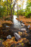 Fall Stream Stock Images