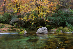 In the fall of the stream. The water is very clear, both sides of the red and yellow leaves.The photography place is the Chinese Sichuan Nanjiang County's Mt Stock Images