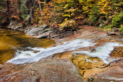 Fall Stream in Mountain Forest Royalty Free Stock Image