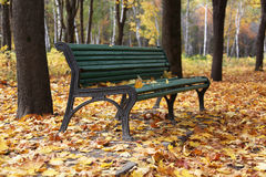 Fall. Street bench  in city park Royalty Free Stock Photo