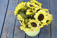 Fall Sunflowers Stock Photography