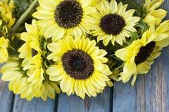 Fall Sunflowers Stock Image